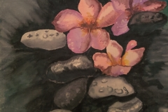 River-Rocks-and-Lotus