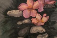 River-Rocks-and-Lotus