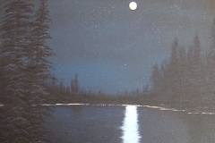 43 Moonlit Lake
