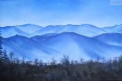 49 Smokey Mountains Vista