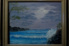 Moonlit Bay Framed