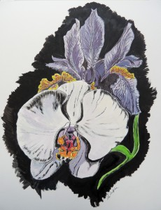 Iris-n-Orchid